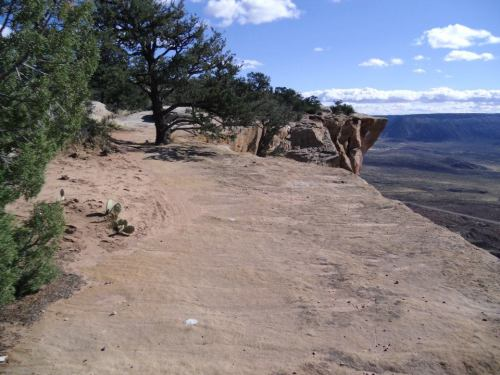 The mesa's edge along the South Rim trail